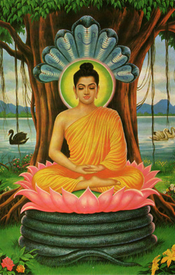 Buddha meditating under the Bodhi Tree. Image courtesy of Wikimedia Commons.