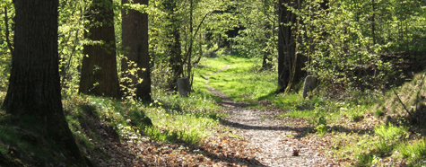 0043 Path - path-3