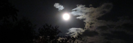 Two-bit Guru | Beyond the Physical | Photo of the full moon, with a few clouds in the night sky | dark, light, tree, branches, shine