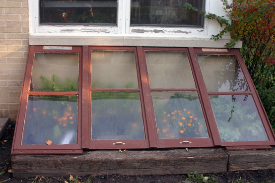 Two-bit Guru | Plant Heaters | Photo of a cold frame.