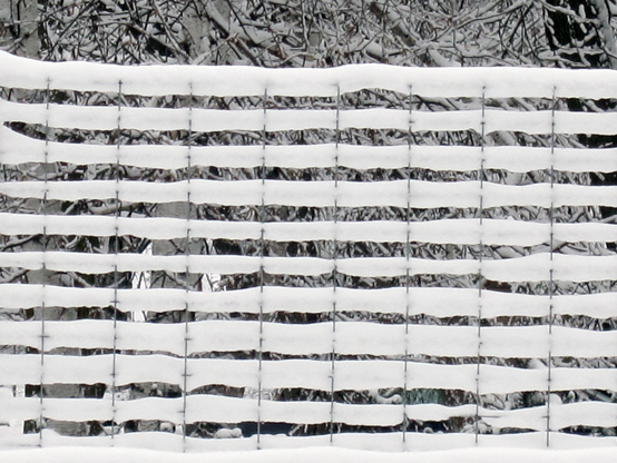 Two-bit Guru | Friday Link List: Organic Bhutan, soda cap siding... | Photo of snow on a trellis.